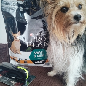 PRODUKTTEST: Hunde-Trockenfutter für kleine Hunde von PURINA Pro PlanOptiHealth